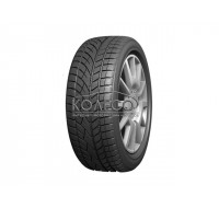 Evergreen EW66 205/55 R17 95H XL